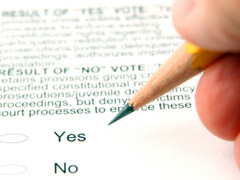 voting yes or no on a ballot