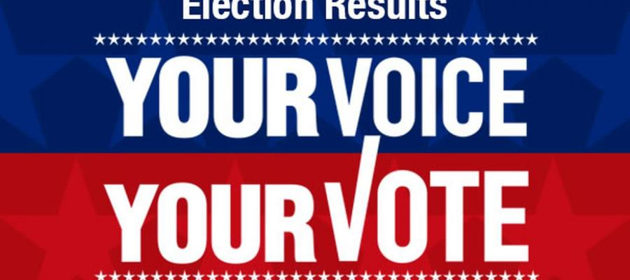 election results, california, votersedge, cavotes, caelections, voting