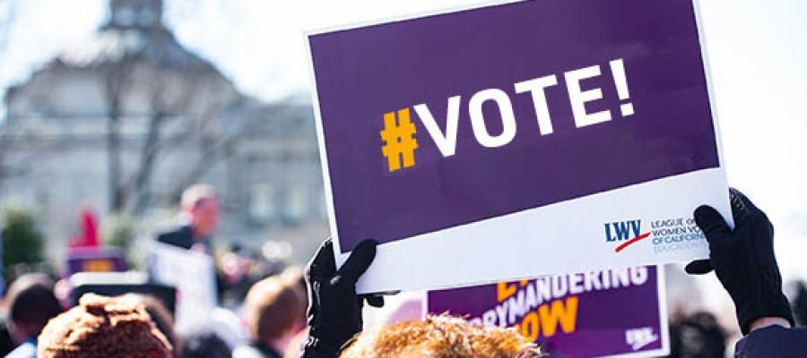 vote, elections, covid19, california, voting rights